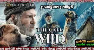 The Call of The Wild (2020) Sinhala Subtitles