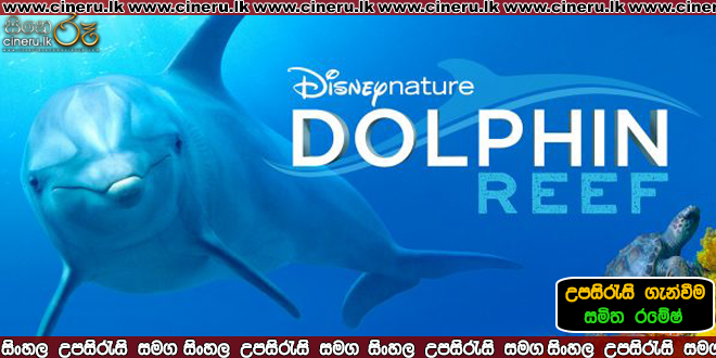 dolphin reef 2020 sinhala sub