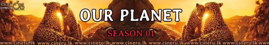 Our Planet Season 1 (2019) Sinhala Subtitles