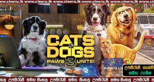 Cats & Dogs 3 Paws Unite 2020 Sinhala Sub