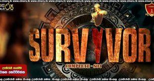 Survive (2020) Complete Season Sinhala Subtitles