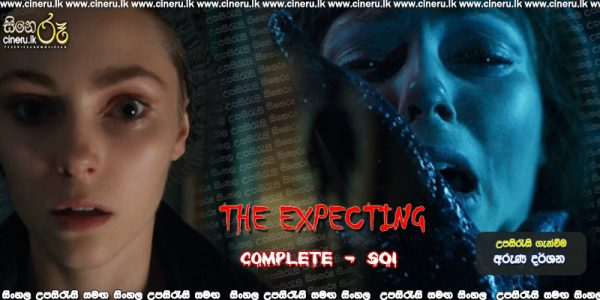 The Expecting: Complete Season 1