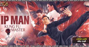 Ip Man: Kung Fu Master (2020) Sinhala Subtitles