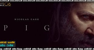 Pig (2021) Sinhala Sub